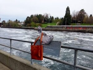 FG handmade bag in Oregon, USA
