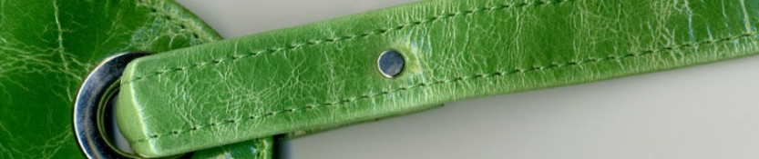 detail of green leather strap for header image