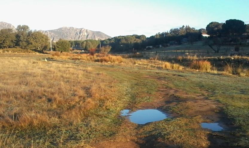 Grazalema Natural Park, home of FG bags